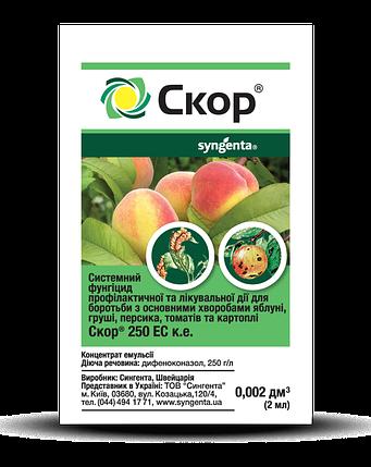 Фунгицид Скор (2 мл) — борьба с заболеваниями яблони, груши и персика, сахарной свеклы, фото 2