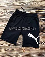 Мужские шорты PUMA (Реплика)