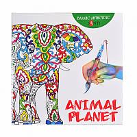 Раскраска антистресс ''Animal Planet''
