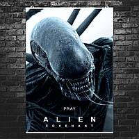 """Постер """"Aliens: Covenant"""". Ковенант, Завет, Чужой, ксеноморф. Размер 60x43см (A2). Глянцевая бумага"""