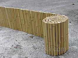 Забор бамбуковый, ограждение 0,3х3м, бордюр