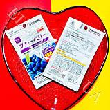 """Екстракт чорниці """"Blueberry"""" 15 днів Daiso Japan., фото 2"""