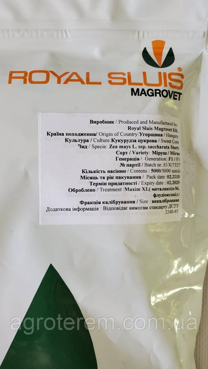 Кукуруза сахарная Мируш F1 MIRUS 5000 с.