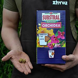 Добриво тривалої дії 6 міс. Substral Osmocote для орхідей 1 конус (5г)