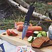 """Нож складной """"Montana""""  для еждневного ношения (EDC)  с крепким клинком и надежной фурнитурой, фото 6"""