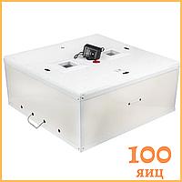 """Инкубатор """"Курочка ряба"""" на 100 яиц ( цифровой терморегулятор) механический переворот"""
