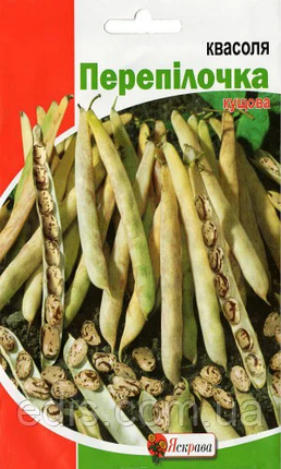 Семена фасоли Перепелочка 20 г, Яскрава, фото 2