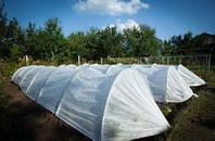 Агропарник Agreen 120 см ширина, 80 см высота, 15 метра, плотность 50 г/м.кв.