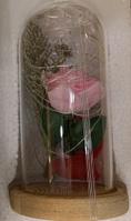 Роза в колбе с LED подсветкой  8Х17см розовая