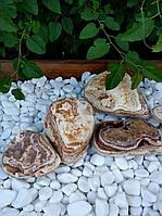 Галька декоративная Sherry, фото 1