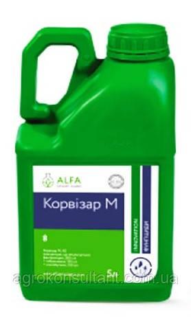 Корвизар М, 5л - фунгицид (фенпропидин, 300 г/л + тебуконазол, 150 г/л + миклобутанил 100 г/л). Альфа Смарт