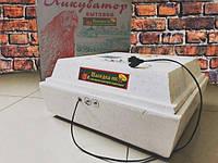 Инкубатор автоматический Наседка 120/72 (220/12В)