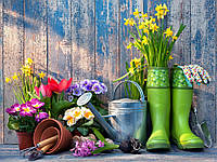 Вирощування рослин як спосіб зміцнення імунітету!!