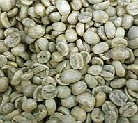 Кофе зеленый в зернах Никарагуа Марагоджип (ОРИГИНАЛ), арабика Gardman (Гардман)
