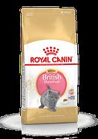 ROYAL CANIN British Shorthair Kitten 2 кг Роял Канин для котят британской кошки