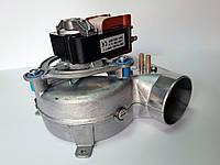 Вентилятор на газовый котел Viessmann Vitopend 100 WHOA, WH0, WH1B, WH1D7829879