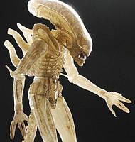 Игровая коллекционная Фигурка Чужой Полупрозрачный Ксеноморф, с подвижными частями, высота 23 см Neca