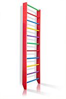Деревянная Спортивная Шведская стенка для дома для детей и взрослых до 120кг - 80х220см разноцветный