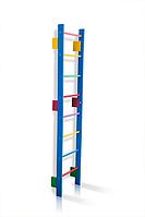 Деревянная Спортивная Шведская стенка для детей и подростков до 80кг - разноцветная, 55х220см T0-220-blue