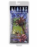 Игровая коллекционная Фигурка Чужой Ксеноморф Лицехват, подвижный, высота 17 см - Alien Queen Facehugger, Neca