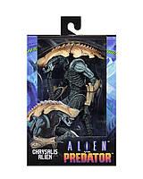 Фигурка чужой Крисалис от компании Neca 17 см - Chrysalis, Aliens VS Predator