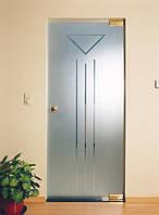 Маятниковая одностворчатая дверь в проеме
