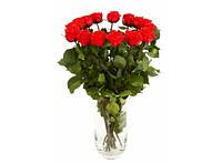 Букет долгосвежих роз Красный Рубин
