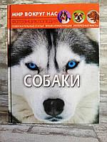 Собаки. Фото энциклопедия. Мир вокруг нас.