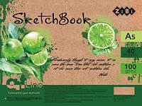 Скетчбук ZB.1491 А5 40 арк пружина, кремовий блок 100 г/м2, ART Line (10)