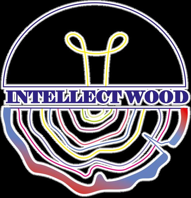 Intellect_wood магазин полезных и развивающих игрушек