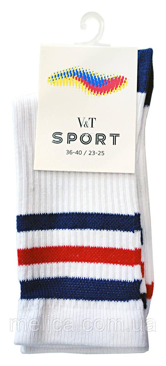 Носки женские Socks V&T elegant ШЖЕг 56-024-0374 Олимп р.23-25 Белый/темно-синий