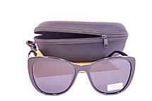 Солнцезащитные очки с футляром F0905-1, фото 3