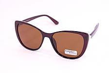 Солнцезащитные очки с футляром F0905-2, фото 2