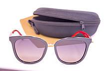 Солнцезащитные очки с футляром F0911-4, фото 2