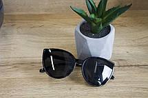 Солнцезащитные очки с футляром F0946-1, фото 3