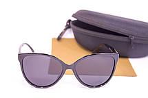Солнцезащитные очки с футляром F0956-1, фото 3