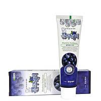 Зубная паста с экстрактом черники HANIL blueberry toothpaste, 180g