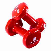Пара гантелей для фитнеса красные по 3 Кг, фото 1