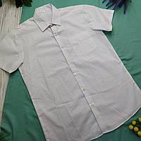 Рубашка подросток George (Англия) 170 коттон белый
