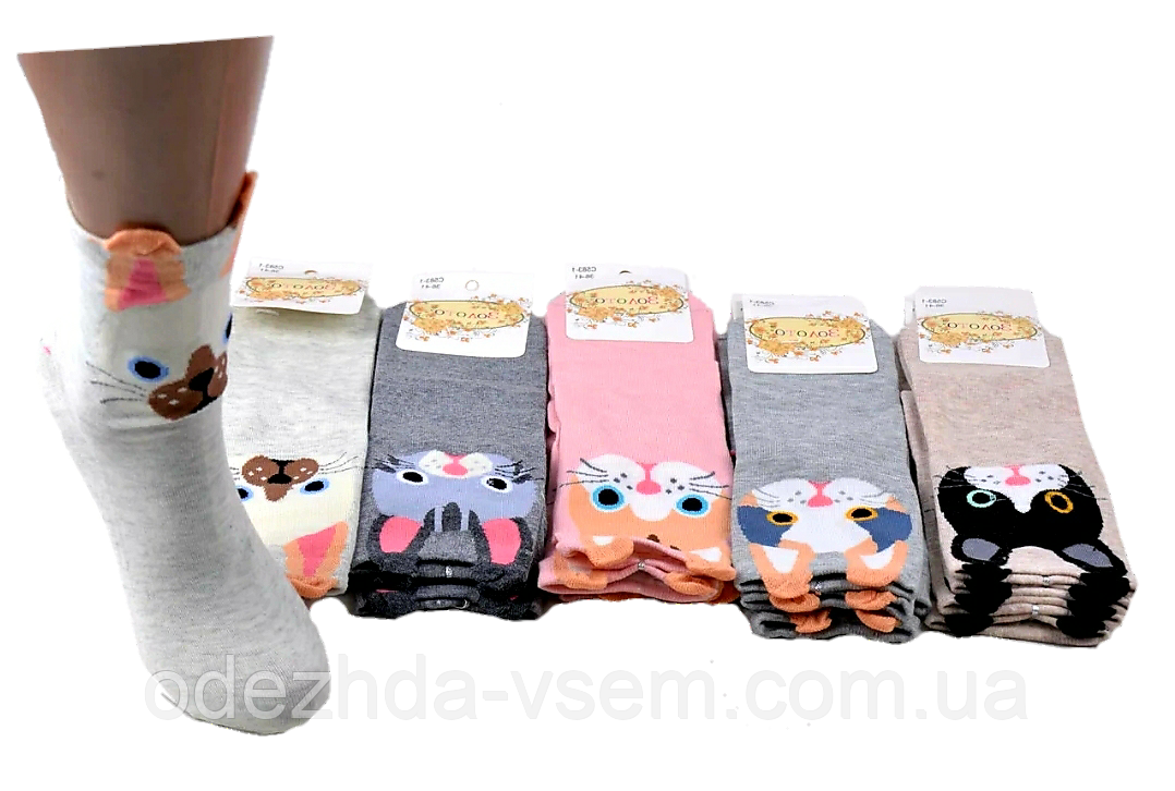 Детские носки Коты