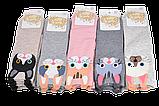 Детские носки Коты, фото 2