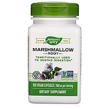 "Корень алтея Nature's Way ""Marshmallow Root"" 960 мг (100 капсул)"