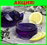 Пурпурный чай Чанг-Шу - натуральное средство для похудения, фото 4