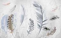 Фотообои 3Д перья в скандинавском стиле разные текстуры , индивидуальный размер