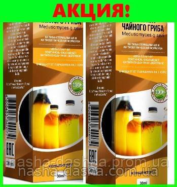 Экстракт чайного гриба от паразитов и гельминтов (концентрат)