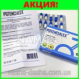 Капсулы для повышения потенции POTENCIALEX, фото 6