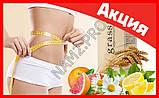 Средство для похудения из ростков пшеницы GrassFit, фото 6