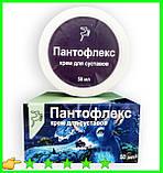 Пантофлекс - Крем для суставов, фото 3
