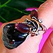 Оригинальное женское серебряное кольцо с улекситом и ониксом, фото 7