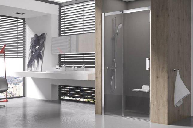 MSD 2-100 R satin (Transparent) Душевая дверь, фото 2